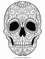 Coloring Printable Primarygames Skull Halloween Sugar Zentangle Artikel sketch template