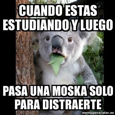 Meme Full - meme koala cuando estas estudiando y luego pasa una moska solo para distraerte 17505345