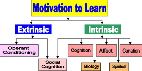 Teaching & Learning Intrinsic And Extrinsic Motivation