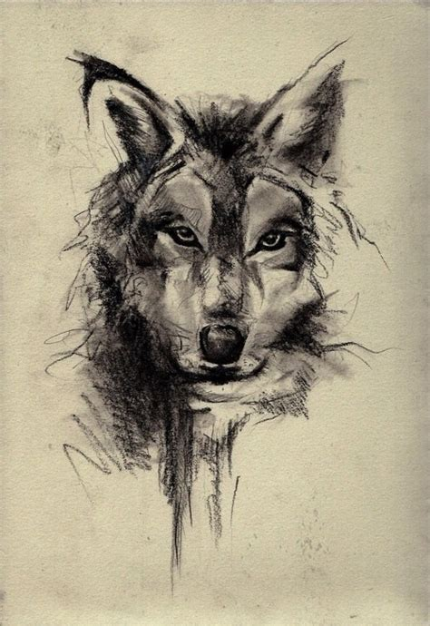 Wolf Drawing Wallpaper by Wolf Sketch Wallpaper 2019 3d Iphone Wallpaper
