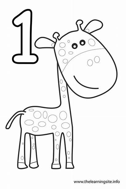 Coloring Number Pages Numbers Outline Giraffe Learning