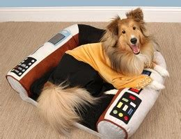 trek captains chair pet bed living take my paycheck shut up and take my money