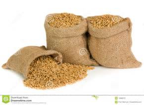 burlap bags wholesale wheat seed stock photo image 19388070