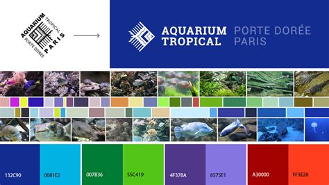 aquarium porte doree buro gds aquarium tropical porte dor 233 e