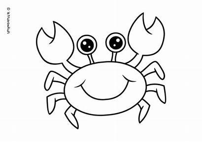 Crab Coloring Drawing Pages Cartoon Sea Draw
