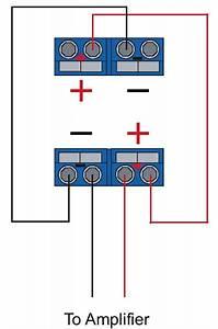 Audiobahn Dual Coil Wiring Diagram