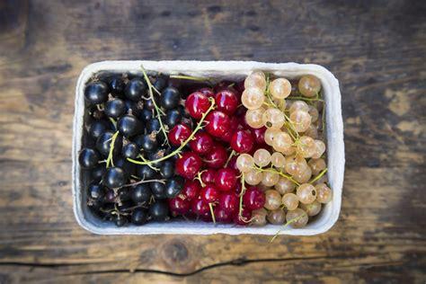 currants red  black currants