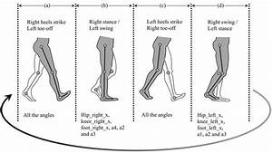 Postures Representing Different Parts Of Gait Phases