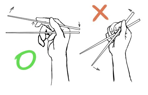 how to hold chopsticks file chopsticks usage png wikimedia commons