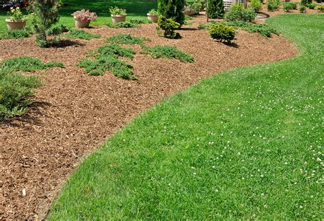what is mulching what types of mulch are best for the garden jaccarino builders llc