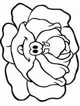 Lettuce Coloring Pages Printable Colour Flowers Colouring Vegetables Vegetable Fruit Templates sketch template