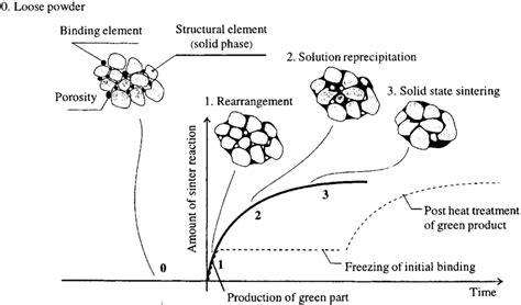 Liquid Phase Sintering Download Scientific Diagram