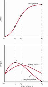 Production function - Wikipedia