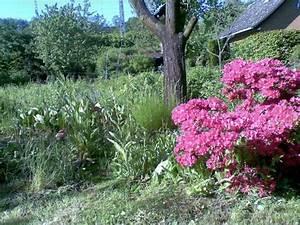 Kleingarten Hannover Kaufen : sch ner kleingarten eigenes schreberg rten wochenendh user ~ Whattoseeinmadrid.com Haus und Dekorationen