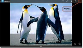 Image result for How Do You set a Kindle Wallpaper?