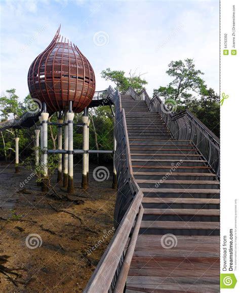 nature steps leading  mangrove birdwatching hide stock