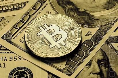 Crypto Lead Take Adoption States Coinatory
