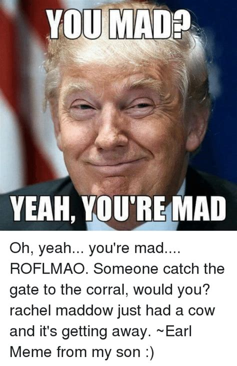 You Mad Meme - you mad yeah you re mad oh yeah you re mad roflmao someone catch the gate to the corral would