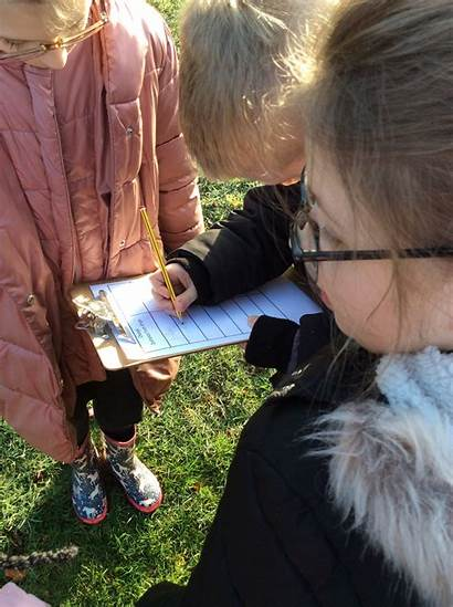 Science Y4 Investigation Primary Hillside