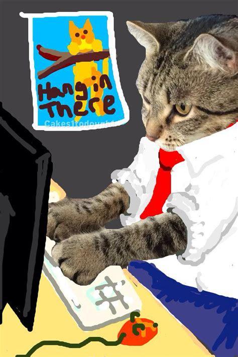 cats  snapchat equals snapcat  pics
