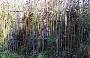 Sichtschutzzaun 2 50 M Hoch : sichtschutzzaun 2m hoch gepflanzt mit 20 ruten pro ~ Bigdaddyawards.com Haus und Dekorationen