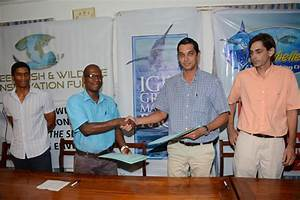 Catch, tag and release: Seychelles sports fishing club and ...