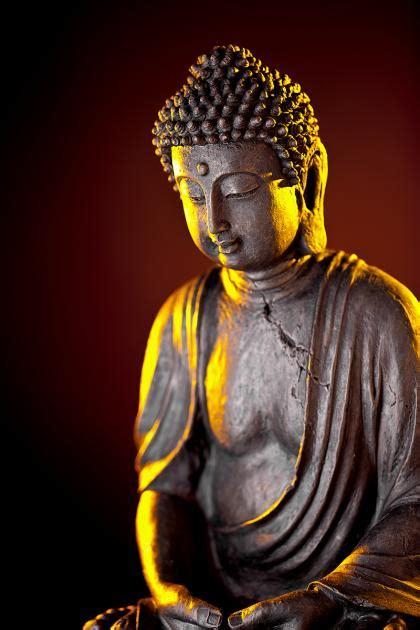 Zitate Buddha Zitate Leben Status