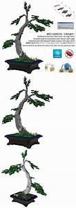 Details About Lego Bonsai Custom Chinese Elm Instructions