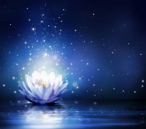 Blue Magical Wallpaper Hd by Water Flower Bloom Water Sparkle Lotus Lights Hd