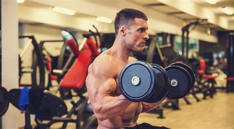 best bulking workouts best routine for bulking up eoua