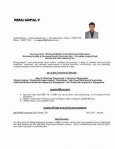 cv for experienced person executive level With sample of resume for experienced person