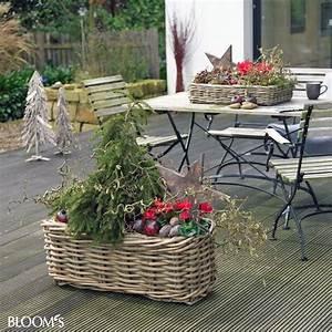 Weihnachtsdekoration Für Draussen : bepflanzungen f r balkon und terrasse im winter ~ Articles-book.com Haus und Dekorationen