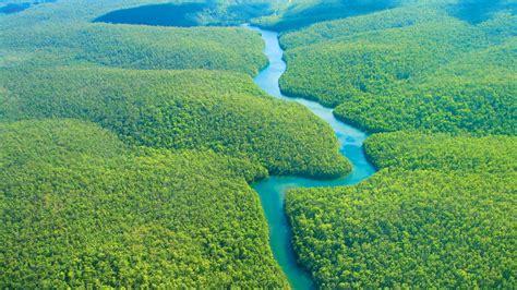 ancient indigenous communities shaped  amazon landscape