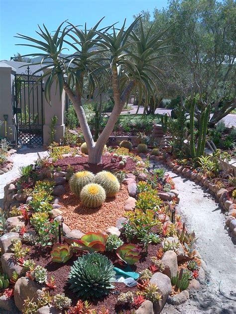 succulent garden desert landscaping ideas