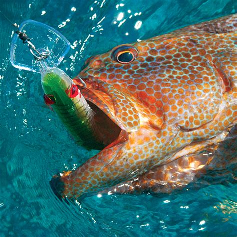 game lure trolling mirrolure grouper series lures deep fishing bait rod catching saltwater clothing fish tackle thelongfin tools