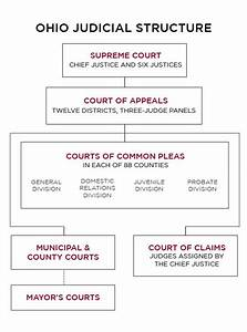 Judicial System Structure
