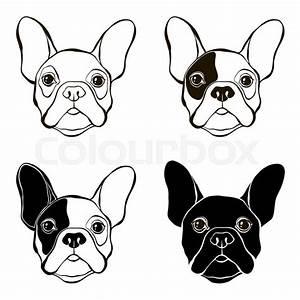 French Bulldog. Vector set of bulldog's face. Hand-drawn ...