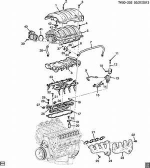 Gm 3 8 Liter Engine Vacuum Diagram Wiring Diagram Promote Promote Associazionegenius It