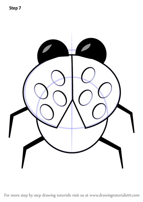learn   draw cartoon ladybug animals  kids step