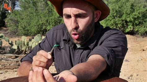 Coyote Peterson and the things that sting   Science 101