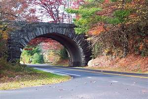 Free Images : landscape, tree, nature, bridge, leaf ...