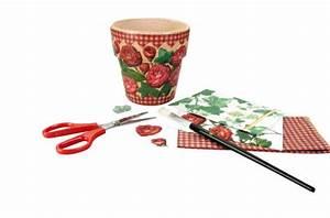 Castorama Pot De Fleur : pot de fleur en terre cuite ~ Melissatoandfro.com Idées de Décoration