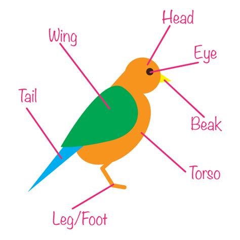 how to create a seamless bird pattern with retro touch in