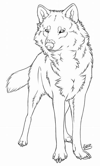 Wolf Transparent Lineart Background Clipart Clip
