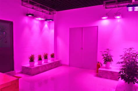 Led Lights For Room Purple by Pin By 五角大樓 On Other