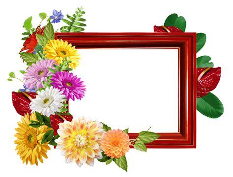 Dalias de colores Marcos de flores PNG