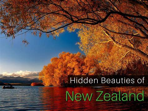 The Hidden Beauties New Zealand