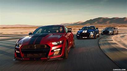 Mustang Gt500 Shelby Ford Cars 1200 Caricos