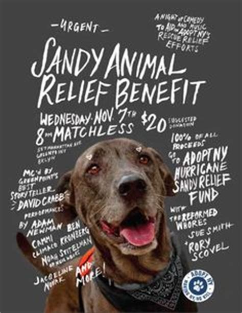 Charity Action For Animal Shelter Poster Templates by 1000 Images About Animal Rescue On Pinterest Animal