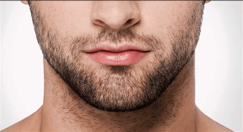 Light Beard by Best Stubble Trimmer 2018 Reviews Our Top For
